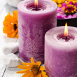 Purple candle with wildflowers — Stock Photo #29206759