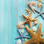 Seashells over wooden background — Stock Photo