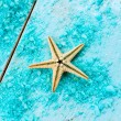 Starfish — Stock Photo #29207107
