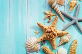 Seashells over wooden background — Stock Photo