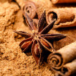 Cinnamon and anise — Stock Photo
