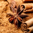 Cinnamon and anise — Stock Photo #29940523
