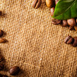 Coffee beans and coffee leaves on vintage background — Stock Photo