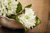 White flowers on vintage background — Stock Photo