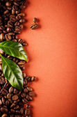 Coffee beans and coffee leaves — Stock Photo