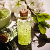 Green spa still life — Stock Photo