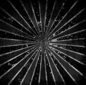 Grunge — Zdjęcie stockowe