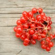 Red berries — Stock Photo #30274265