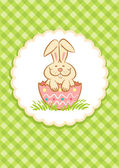 Easter Bunny — Stock Vector