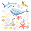 Graphic marine animals — Stock Vector