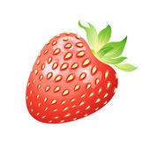 Realistic image of delicious ripe strawberries — Stock Vector