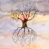 Tree against the sky — Stock Photo