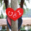 Heart on the tree — Stock Photo