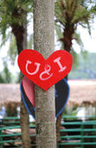 Heart on the tree — 图库照片