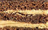 Texture of chocolate cake  — Stock Photo