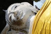 Buddha head — Stockfoto