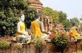 Many statues of Buddhas — Stock Photo