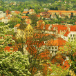 Spring view of Cesky Krumlov. Czech republic — Stock Photo #26208355