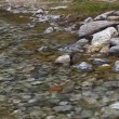 With its clear water stream flowing over rocks — Stock Video