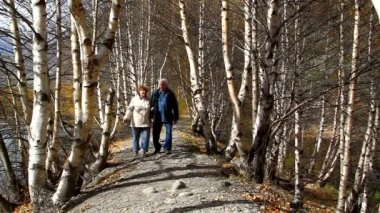Happy elderly couple walking in the forest, smiling, talking — Stock Video