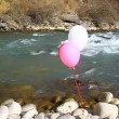 Three helium balloons are flown on the rocks by the river — Stock Video