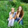 Stock Video: Cheery and amusing mother and daughter fun with spikelets in mouth on green meadow