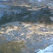 Stock Video: Floe floating on river, illuminated by golden sun