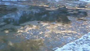 Floe floating on the river, illuminated by golden sun — Stockvideo