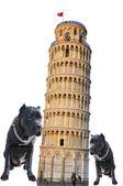 Verona. cidade dos amantes. — Foto Stock