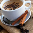 Cup of capuccino with cinnamon and cocoa — Stock Photo
