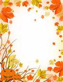 Autumn greeting — Stock Photo