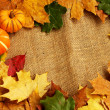 Pumpkins and autumn leaves frame - Stock Photo