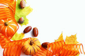 Pumpkins card frame — Stock Photo