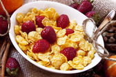 Strawberries and cereals breakfast — Stock Photo