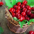 Cherry fruits in a basket — Stock Photo #26728597
