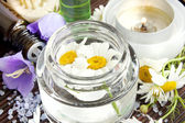 Camomile flowers essence for spa — Stock Photo