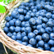 Blueberries basket closeup — Foto de stock #29472875