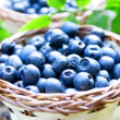 Stock Photo: Blueberries closeup