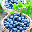 Blueberries basket closeup — Stock Photo