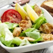 Vegetables salad with grilled chicken breast — Stock Photo #29903705