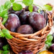 Basket of plums — Stock Photo