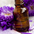 Stock Photo: Flower essence