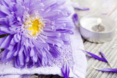 Spa flower — Zdjęcie stockowe