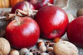 Rojo otoño manzanas surtido closeup — Foto de Stock