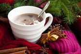 Cup of chocolate with spices wrapped in scarf — Stock Photo