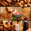 Spices collection collage — Foto Stock