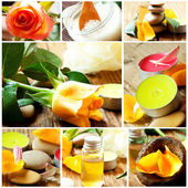 Spa and Aromatherapy Collage.Spa Essences Settlement — Stock Photo