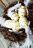 Easter Eggs in a Nest with Feathers — Stock Photo