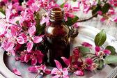 Flower Essence — Stock Photo