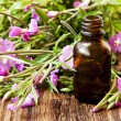 Herbal Essence Bottle — Stock Photo #50639299